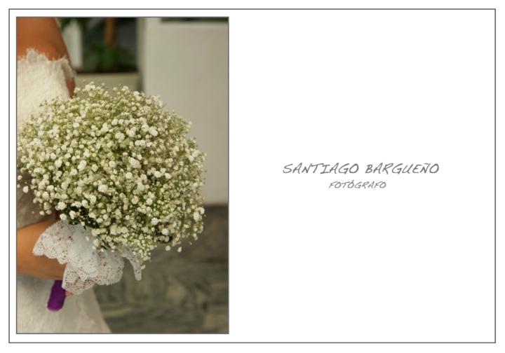santiagobargueño-anaydavid008