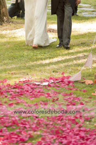 ceremonia-entrada-pasillo-petalos-bandera-coloresdeboda