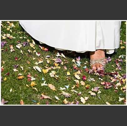 colores-de-boda-salida-novios-flores-secas-2
