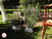 colores-de-boda-photobooth-detalle-lavanda-chiara-manuel
