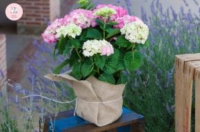 colores-de-boda-seating-plan-detalle-flores-hortensias-rosas