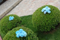 colores-de-boda-decoracion-clavel-azul-ceremonia-maria-jesus-victor