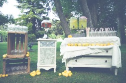 decoracion-fincas-madrid-puesto-limonada-24-al