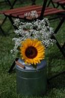 colores-de-boda-26-lecheras-pasillo-nupcial-girasol-paniculata
