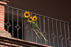 colores-de-boda-55-decoracion-balcones-girasoles
