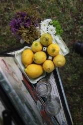 decoracion-bodas-fincas-madrid-limonada
