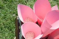 colores-de-boda-42-organizacion-bodas-rincon-conos-arroz-petalos-2