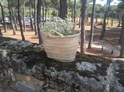 decoracion-bodas-madrid-rustica-capazo-flores-pf