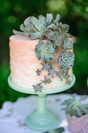 suculenta-tarta-boda