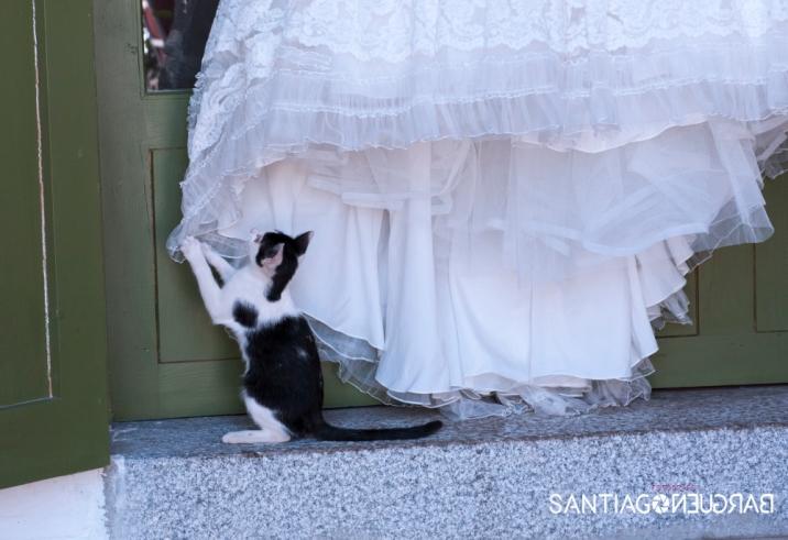 santiago-barguec3b1o-fotografia-boda-palacio-hoyuelos-029