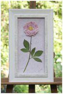 colores-de-boda-conservar-ramo-novia-lucia-cano12