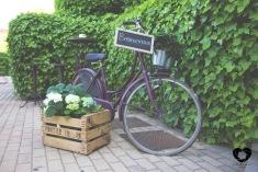 colores-de-boda-bienvenida-bicicleta-vintage