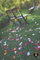 colores-de-boda-decoración-ceremonia-girasoles