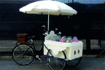 colores-de-boda-carritos-vintage-1