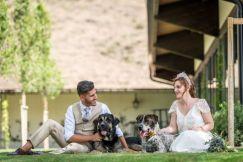 colores-de-boda-perro-zankyou-abrazo-animal-1