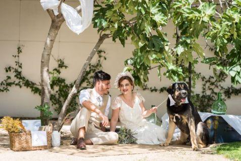 colores-de-boda-perro-zankyou-abrazo-animal-11