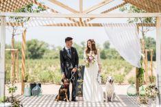 colores-de-boda-perro-zankyou-abrazo-animal-2