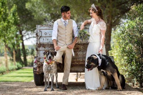 colores-de-boda-perro-zankyou-abrazo-animal-4