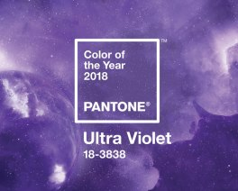 organizacion-bodas-madrid-color-pantone-1